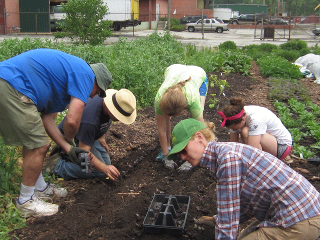 Green Gardening Community Events