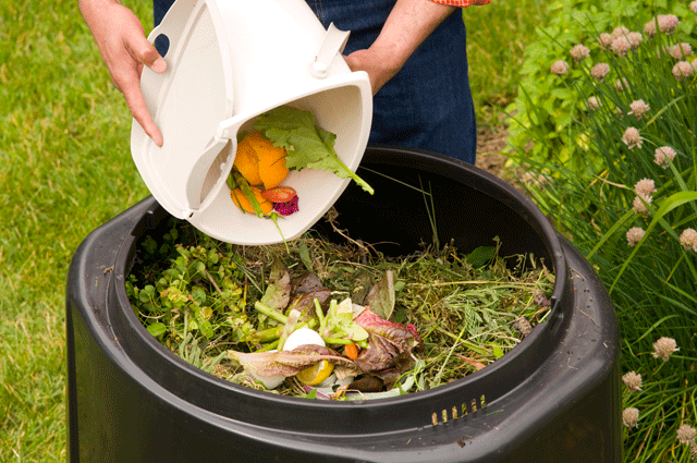 Make use of a compost
